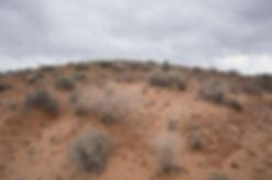 Las Vegas Desert Hill Sparse Plants Smal