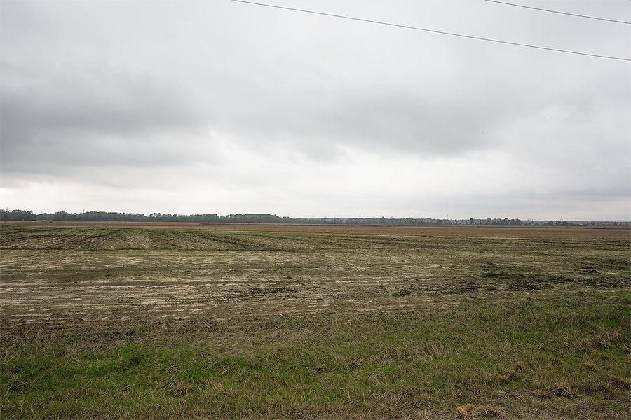 Field multiple directions copy 2.jpg
