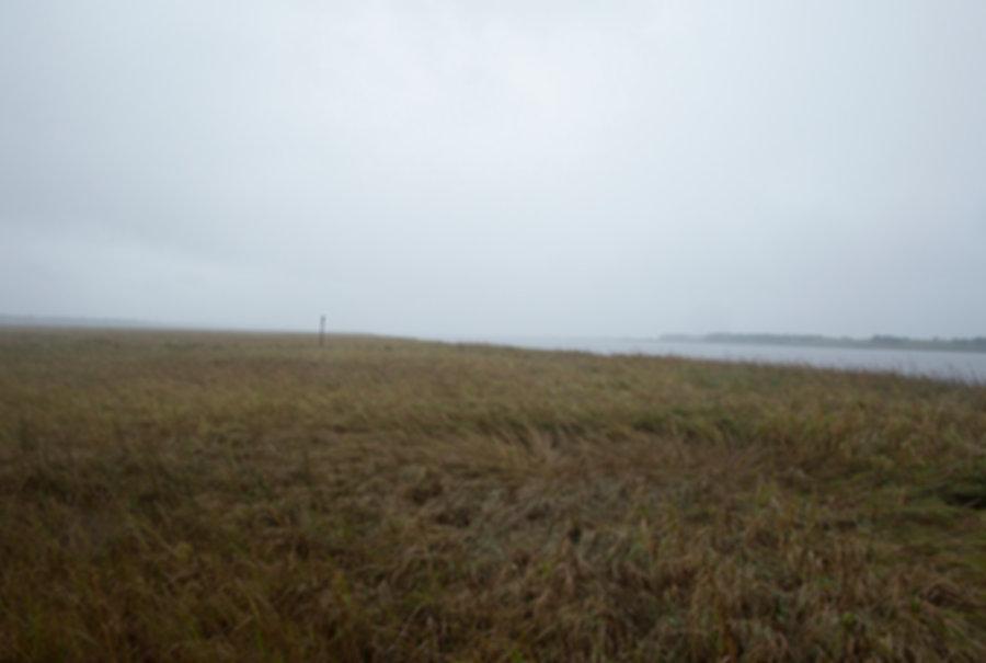 Landscape 3 96.jpg