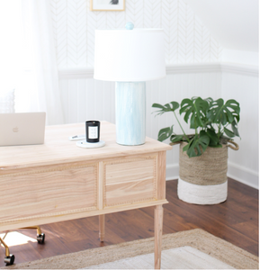 Office+Space+Inspiration+--+Mary+Hannah+Interiors