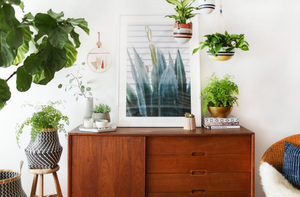 Mary+Hannah+Interiors+--+Bring+The+Outdoors+in