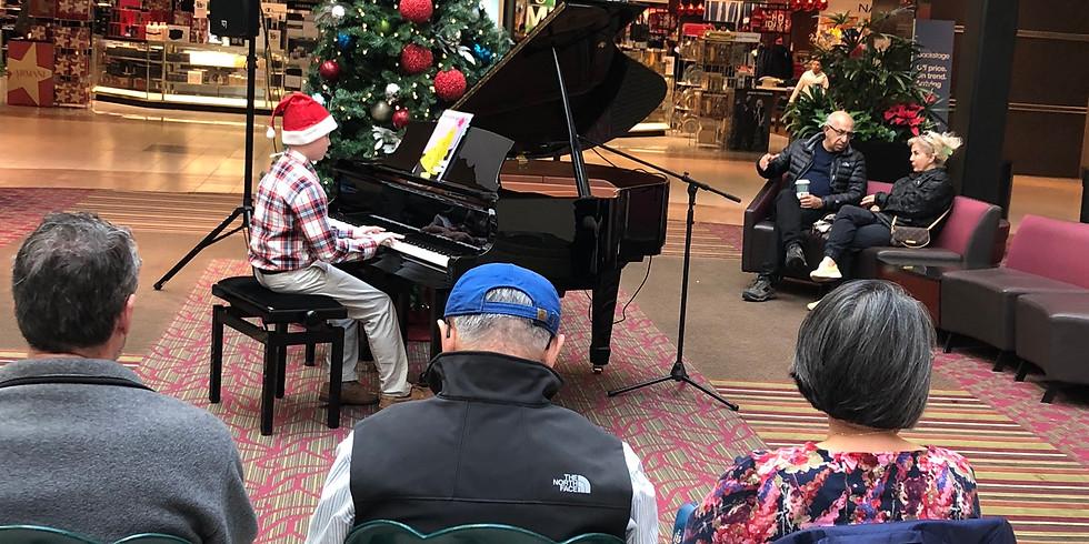 Music Link Holiday Serenades Fundraiser