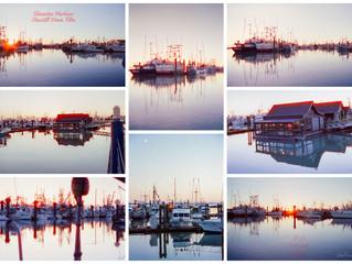 Steveston Harbour shot on Cinestill 35mm Film