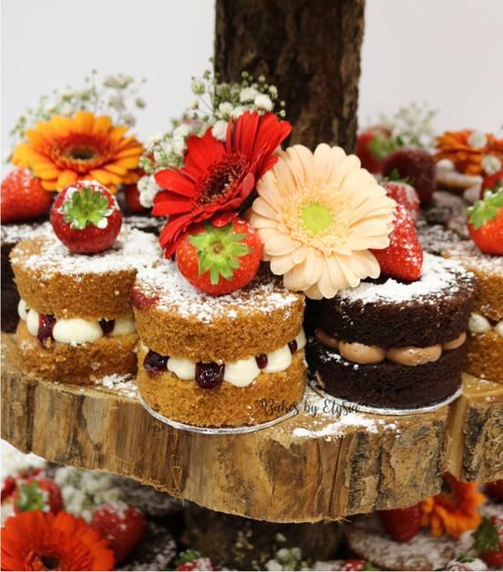 Naked Mini Cakes