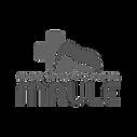 Logo_baja_calidad_sinfondo_edited.png