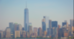 dlm-nycskyline.PNG