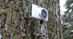 Mount on a Still Camera