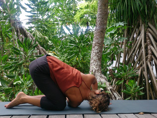 The benefits of yoga postures derive not at the level of form...