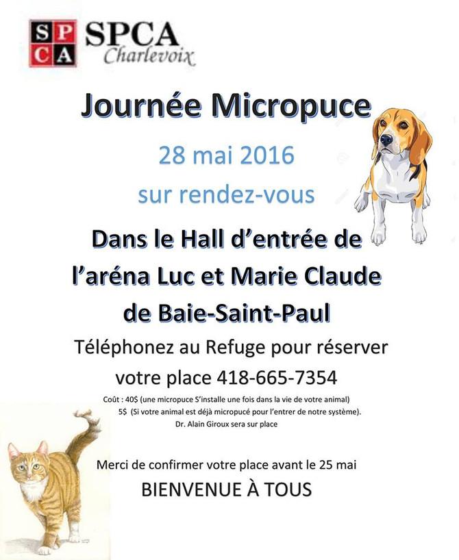 Invitation de la SPCA pour la journée micropuce qui aura lieu le 28 mai 2016