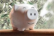 Premier Pig.jpg