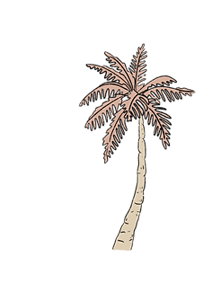 Palmtree_edited.png