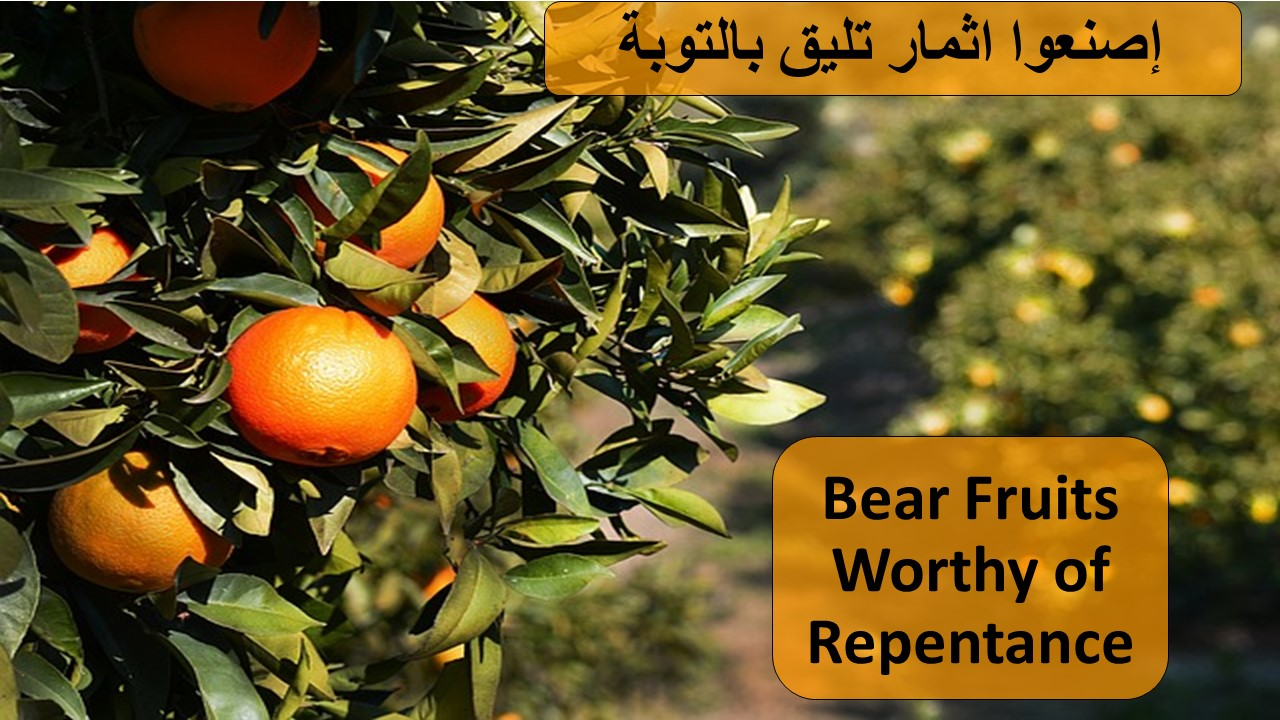 + Fruits of Repentance (Feast of Epiphan