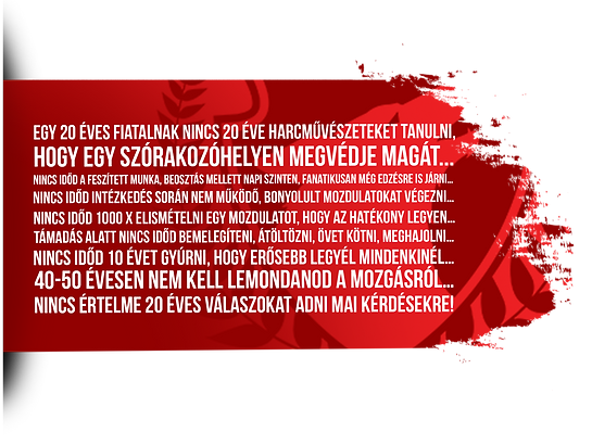 web_kerdesek3.png