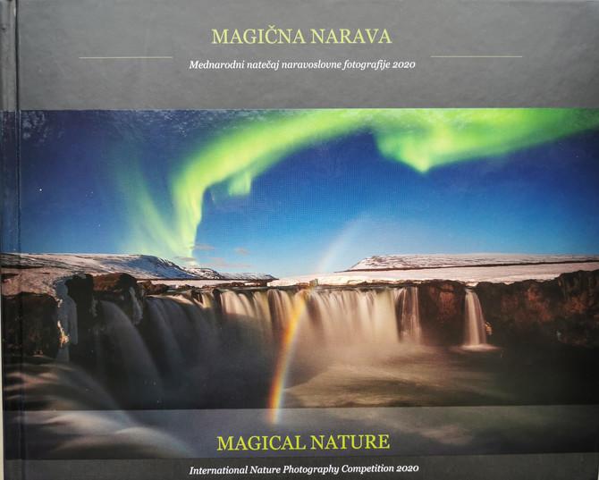 Magical nature contest 2021