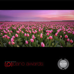 Epson Pano Awards 2019