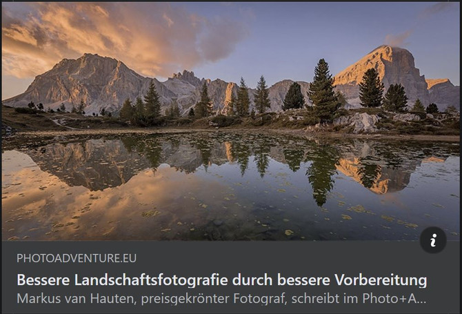 Blog article (German)