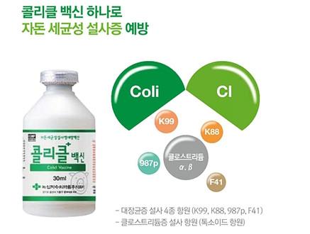 [신제품] 국내최초 자돈 세균성설사 예방백신 `콜리클 백신`