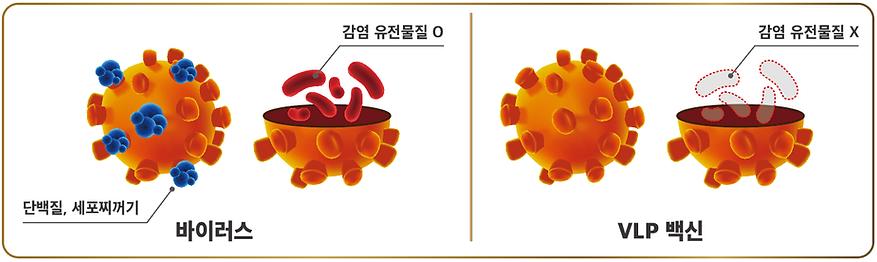 써코가드-V.png