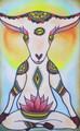 Goat Yoga...Really?