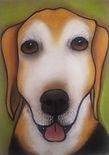 new beagle.jpg