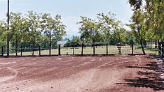 Carrière en sable ferme équestre domaine de montaut