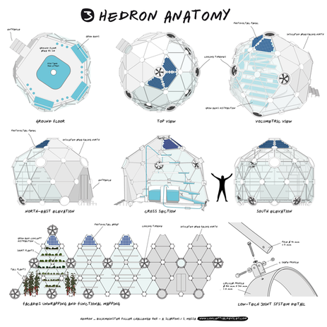 BFC_HEDRON_03 [818px].png