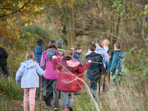 DIY Forest School - Outdoor Activities to Try at Home