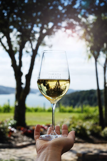 Wineglass with view (1).jpg