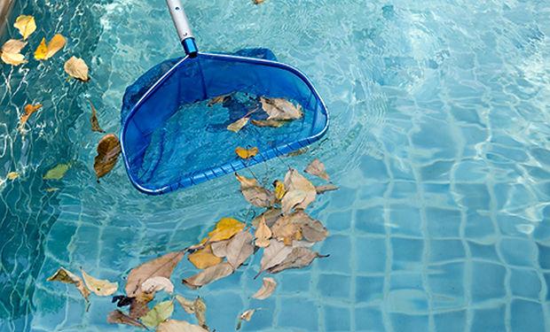 pool-maintence_fall.jpg