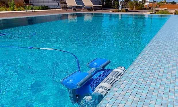 ideas-great-dolphin-pools-with-mosaic-po