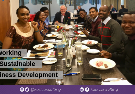 Networking for Sustainable Business Development