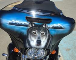 Fairing Harley-Davidson