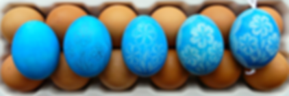egg dozen cropped no red.png