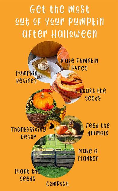 pumpkns-after-halloween.jpg