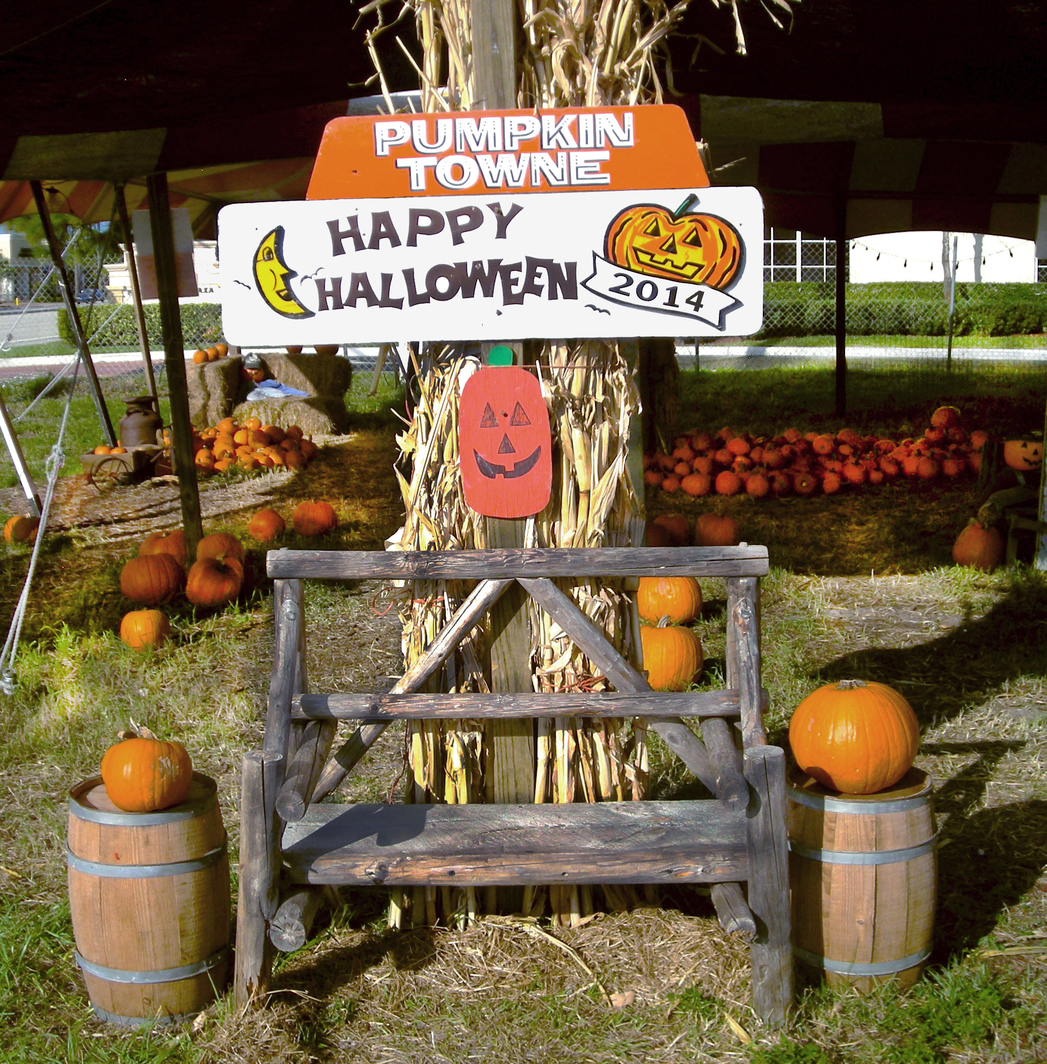 Pumpkin Towne Bench Photo Op