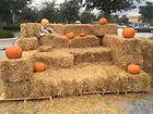 Fall activities south florida