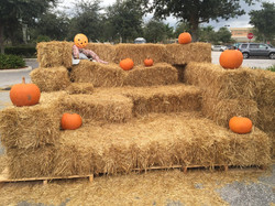 wellington hay bales