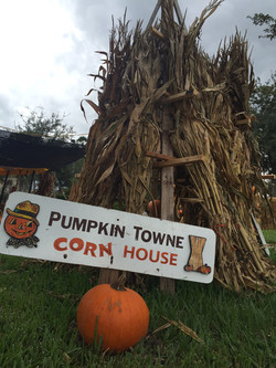 wellington corn stalk house