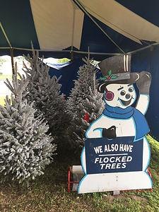 flcoked christmas trees