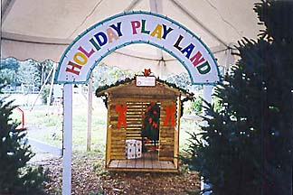 Tree Towne Playland