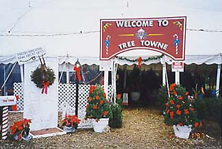 Tree Towne Entrance