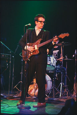 Bayley_Roberta_028_Elvis_Costello.jpg