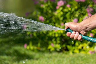 man-holds-garden-hose-his-hand-watered-p
