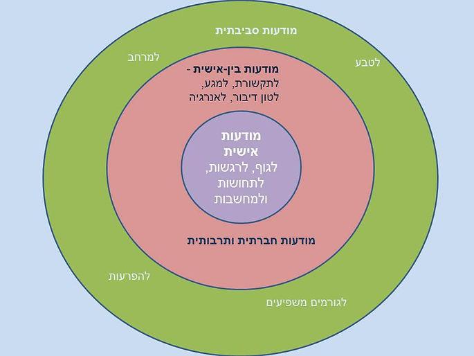 מעגלי מודעות.jpg