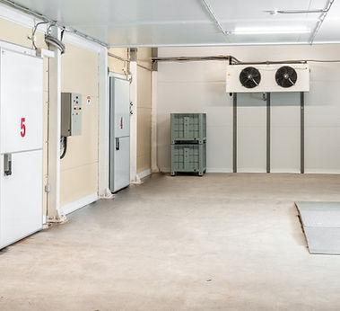 freezerdoor2-1030x450.jpg