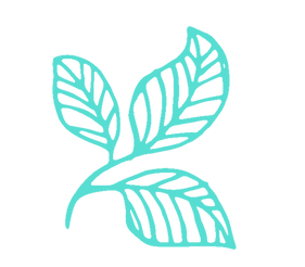 Logo_Aqua.png