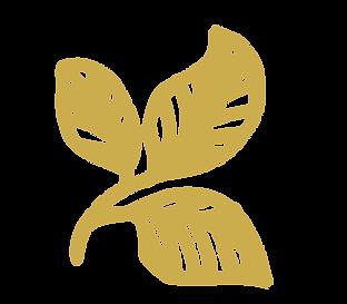 Logo_Mustard.png