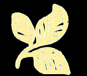 Logo_Yellow.png