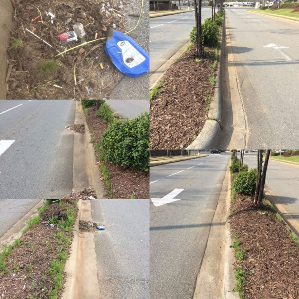 Median Beautification