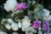 DSC_2982-204.jpg